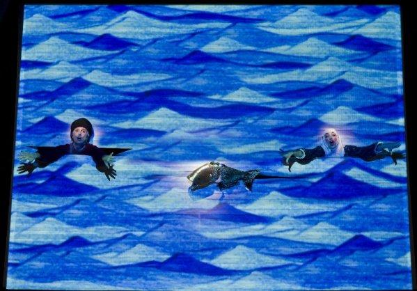 pesciolino-doro10